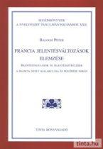 Francia jelentésváltozások elemzése